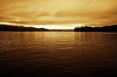 Photograph - Sunrise On The Umpqua River by Katie Wing Vigil
