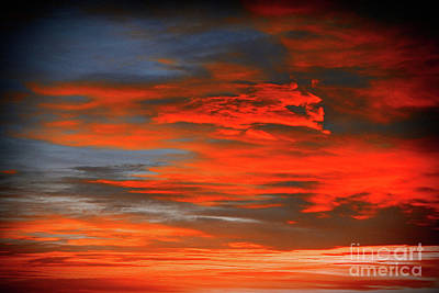 Photograph - Sunrise Orange by Donna L Munro