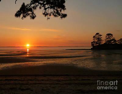 Painting - Sunrise Over Bay, New Zealand by Jennifer Cruden