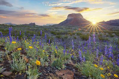 Big Bend National Park Photograph - Sunrise Over Big Bend Bluebonnets by Rob Greebon