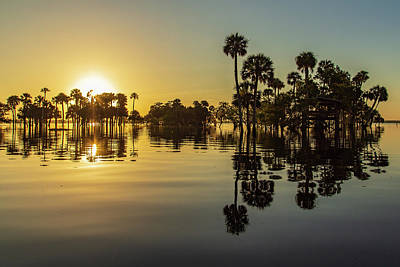 Photograph - Sunrise Over Flooded River Plains by Stefan Mazzola