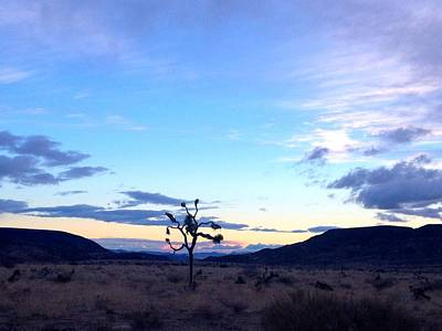 Pioneertown Photograph - Sunrise Over Joshua Tree by Nathalie Laurent-Marke
