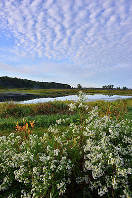 Photograph - Sunrise Over Lost Valley Wetland In Glacial Park by Ray Mathis