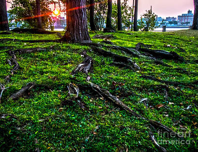 Biege Photograph - Sunrise Over Queens by James Aiken