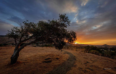 Photograph - Sunrise Over San Luis Obispo by Tim Bryan