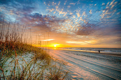 Photograph - Sunrise Over Tall Grass On Myrtle Beach by Anthony Doudt
