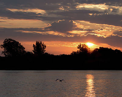 Photograph - Sunrise Over The Braden River by Richard Goldman