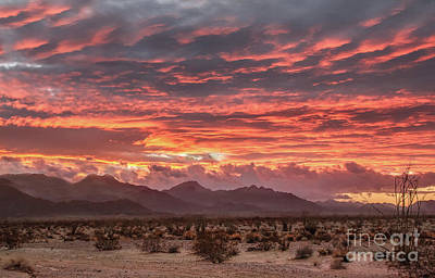 Photograph - Sunrise Over The Gila Mountains  by Robert Bales