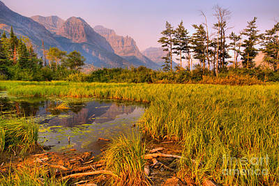 Photograph - Sunrise Over The Glacier Wetlands by Adam Jewell