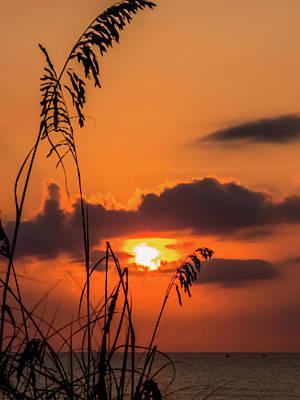 Beach Grass Photograph - Sunrise Over The Horizon by Zina Stromberg