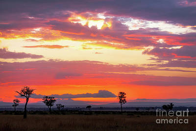 Photograph - Sunrise Over The Mara by Jane Rix