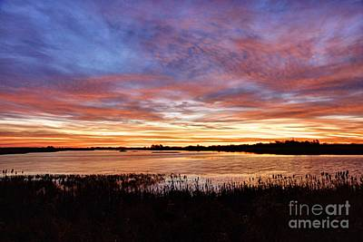 Photograph - Sunrise Over The Marsh by Larry Ricker