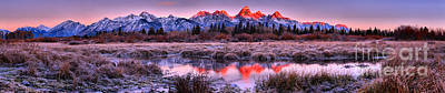 Photograph - Sunrise Over The Teton Willows Panorama by Adam Jewell