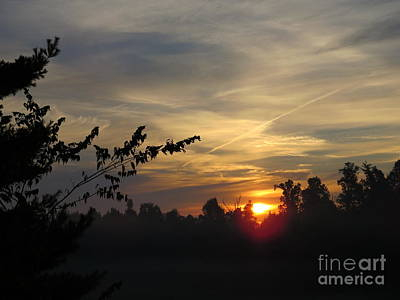 Photograph - Sunrise Over The Trees by Craig Walters