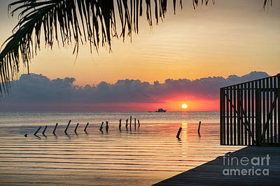 Photograph - Sunrise Paints The Sky  by David Zanzinger