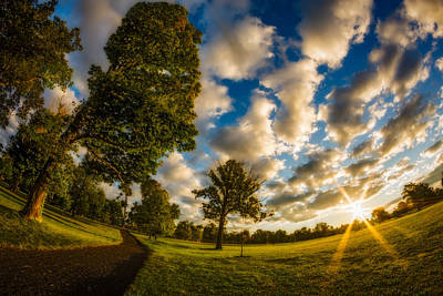 Photograph - Sunrise Path At Meadows Edge by Chris Bordeleau