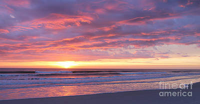 Photograph - Sunrise Pinks by LeeAnn Kendall