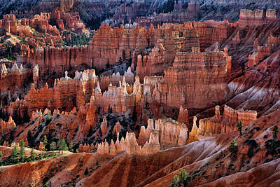 Photograph - Sunrise Point - Hoodoos - Bryce National Park by Nikolyn McDonald