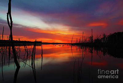 Photograph - Sunrise Preglow by Roger Becker