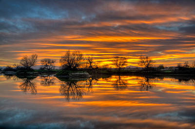 Sunrise Reflection In The River Art Print