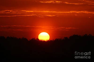 Photograph - Sunrise by Robin Coaker