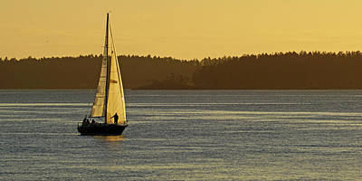 Photograph - Sunrise Sail by Inge Riis McDonald
