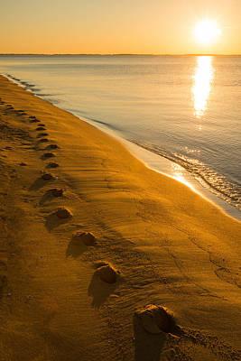 Photograph - Sunrise - Sandy Point State Park by Dana Sohr