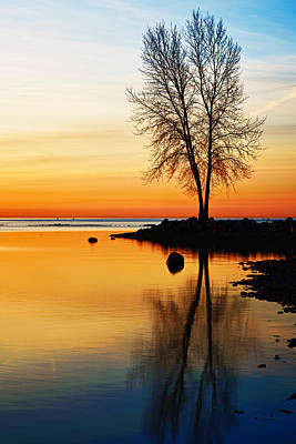 Metro Park Photograph - Sunrise Serenity by James Marvin Phelps