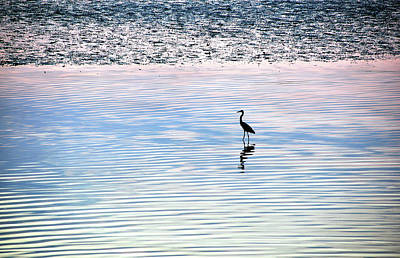 Photograph - 'sunrise Serenity' by Joanne Brown