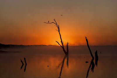 Photograph - Sunrise Serenity by Scott Bean