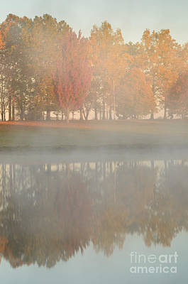 Photograph - Sunrise Steam With Autumn Trees by Tamara Becker