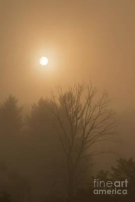 Photograph - Sunrise Through Mountain Mist by Thomas R Fletcher
