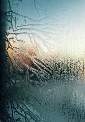 Photograph - Sunrise Through The Frost by Brian Sereda