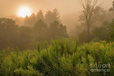 Photograph - Sunrise Through The Mist by Thomas R Fletcher