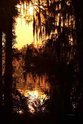 Photograph - Sunrise Through The Spanish Moss by rd Erickson