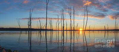 Michael Versprill Photograph - Sunrise Thru The Sticks Panorama by Michael Ver Sprill