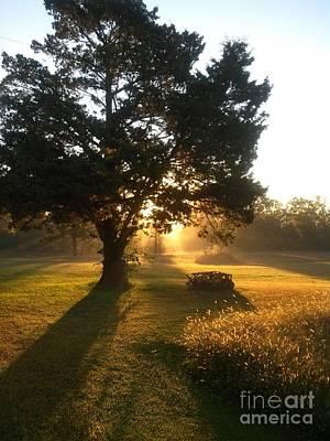Photograph - Sunrise  by Tom Conboy