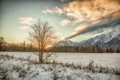 Photograph - Sunrise Tree Digital Oil Paint 2 by Charlie Duncan