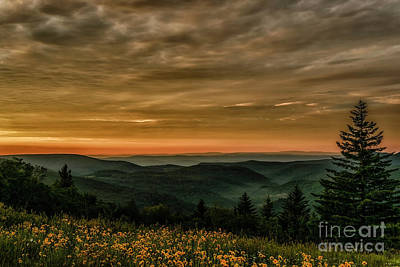 Photograph - Sunrise With Summer Flowers by Thomas R Fletcher