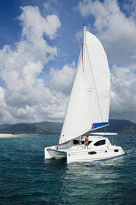 Sunsail Catamaran Art Print