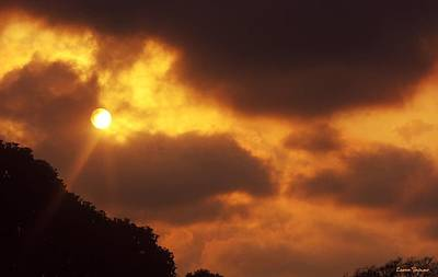 Photograph - Sunser Over Trees by Leanne Seymour