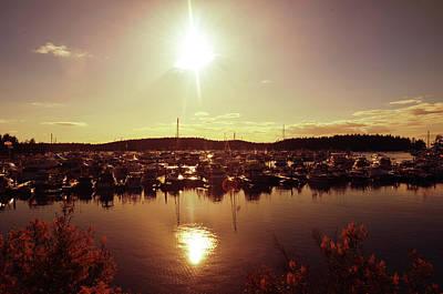 Rose - Sunset @ roche harbor by Aparna Tandon