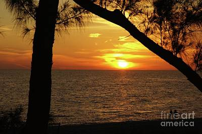 Sunset 2 Art Print by Megan Cohen