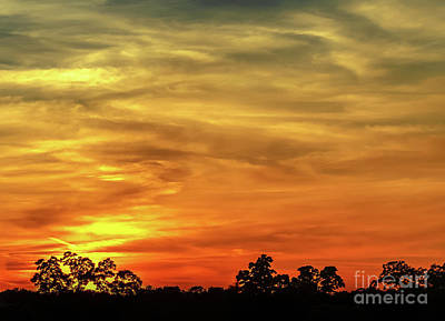 Photograph - Sunset 3 by Andrea Anderegg
