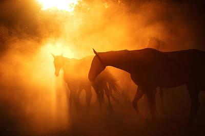 Konik Photograph - Sunset #4 by Artur Baboev