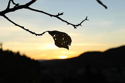 Photograph - Sunset  by Alena Madosova