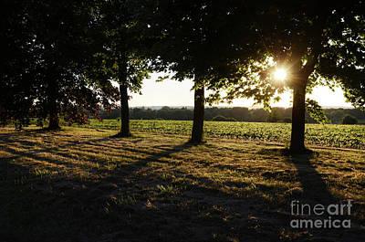 Antique Maps - Sunset along Elgin Mills Road-2 by Steve Somerville