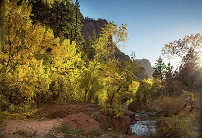 Photograph - Sunset Along Kolob Arch Trail by Kunal Mehra