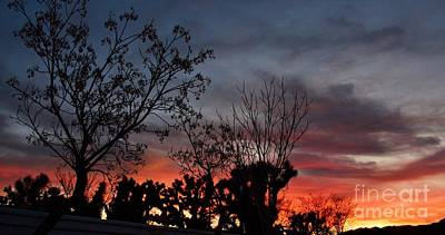Photograph - Sunset Along The Fenceline by Angela J Wright