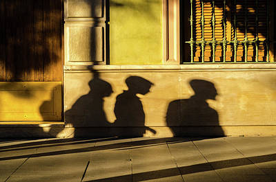 Photograph - Sunset Among The Shadows by Andrea Mazzocchetti